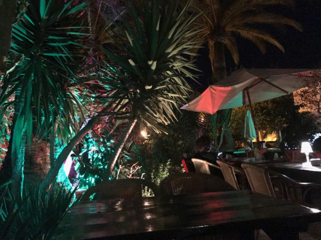Tropical Restaurant With Palm Trees, Umbrellas & Different Colored Lights