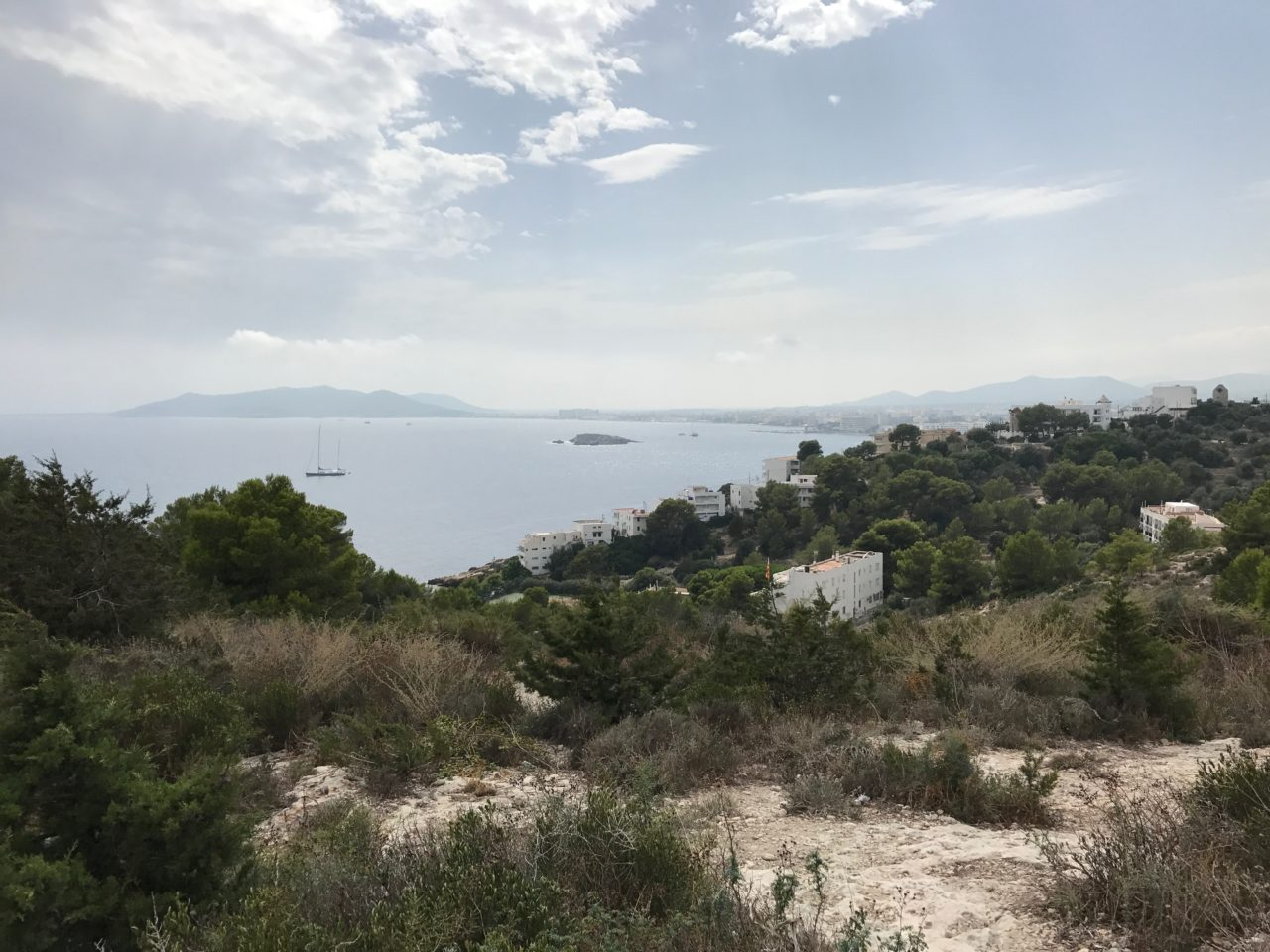 Hillside View Of Ocean With Trees And Cloudy Sky