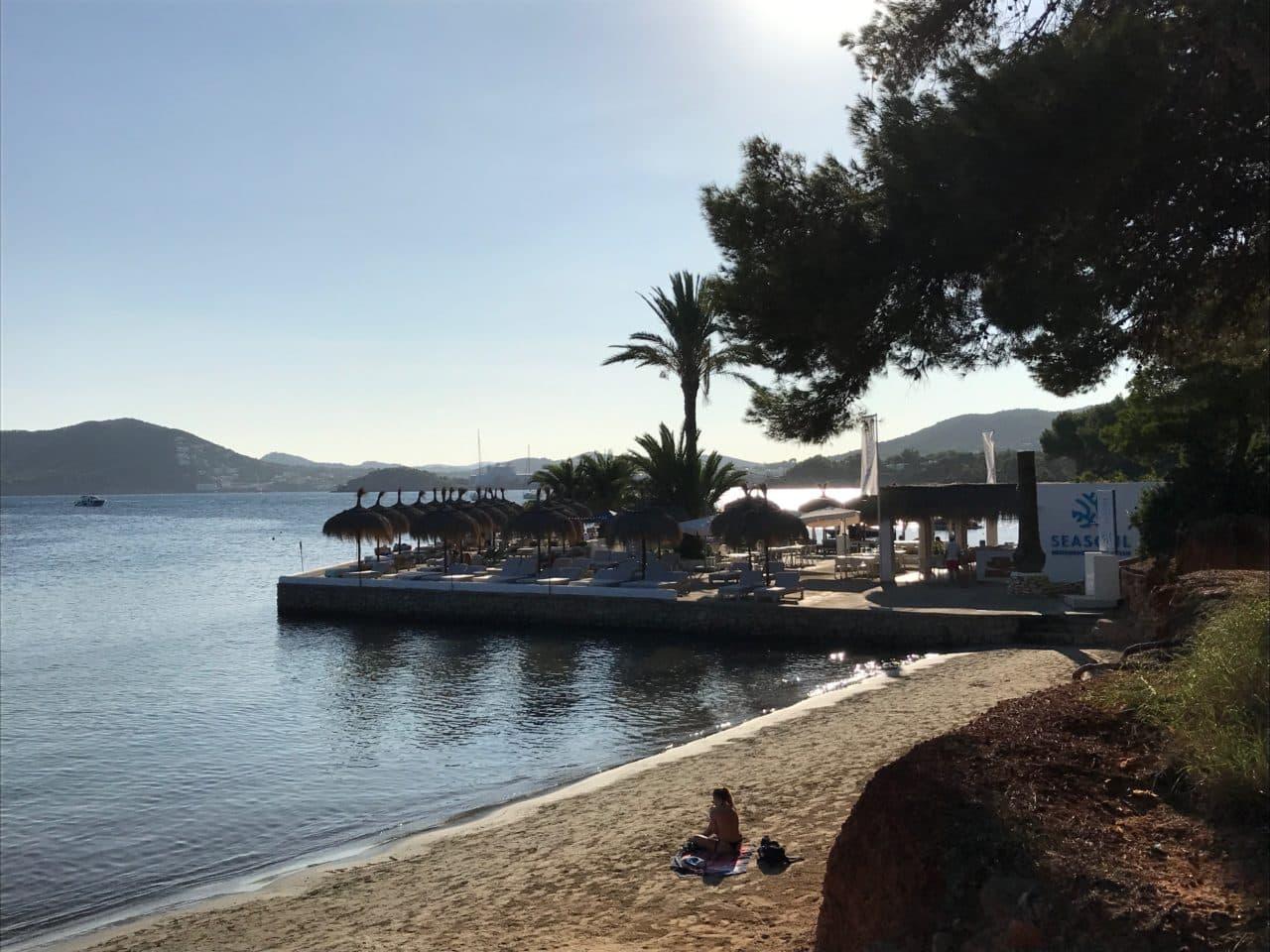 Tropical Beach Bar By The Ocean In Ibiza