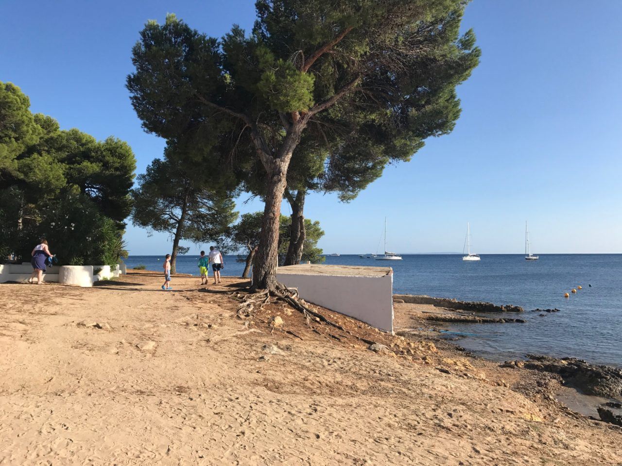 Beach Pathway With Trees And People