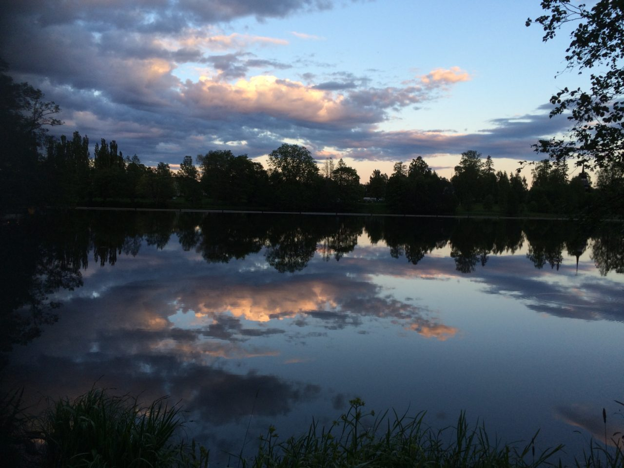 Swedish Lake With Mirror Glossy Water Surface A Summer Evening In The Park
