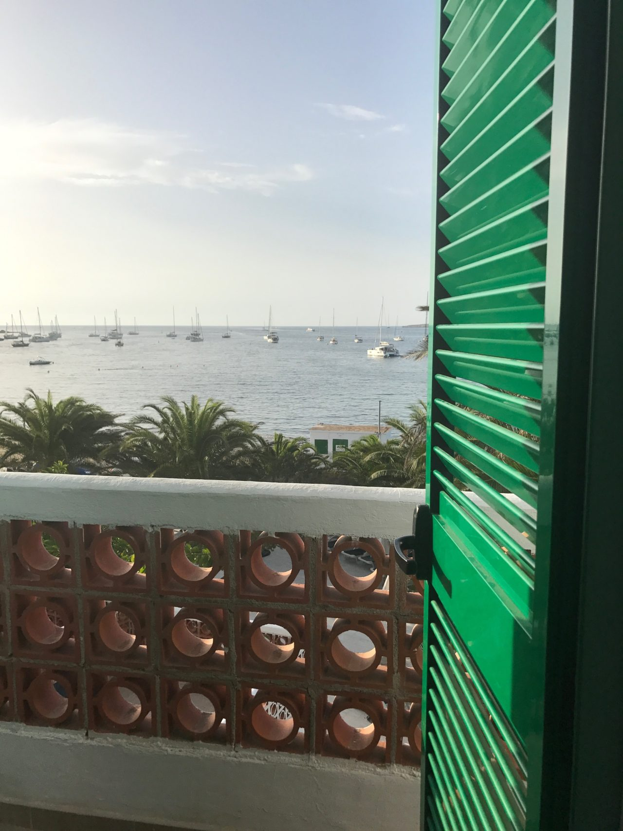 View Of Palm Trees And Sea And Boats From A Balcony With Green Doorn