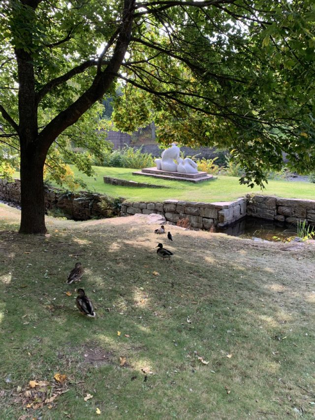 Ducks On Lawn Next To Stream And Statue