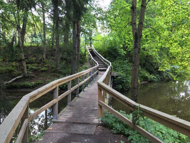 Wooden Bridge Over Forest Creek