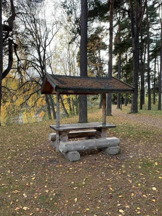 Wooden Forest Camping Bench In Fall