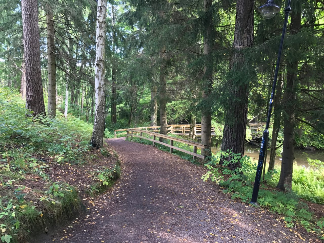 Forest Pathway With Fence And Trees