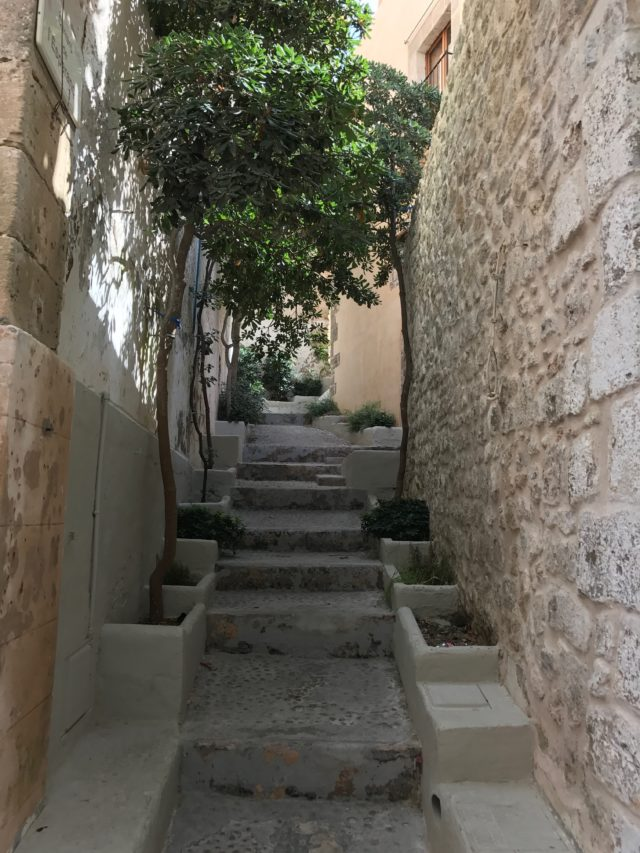Narrow Stone Stair Alley With Small Trees