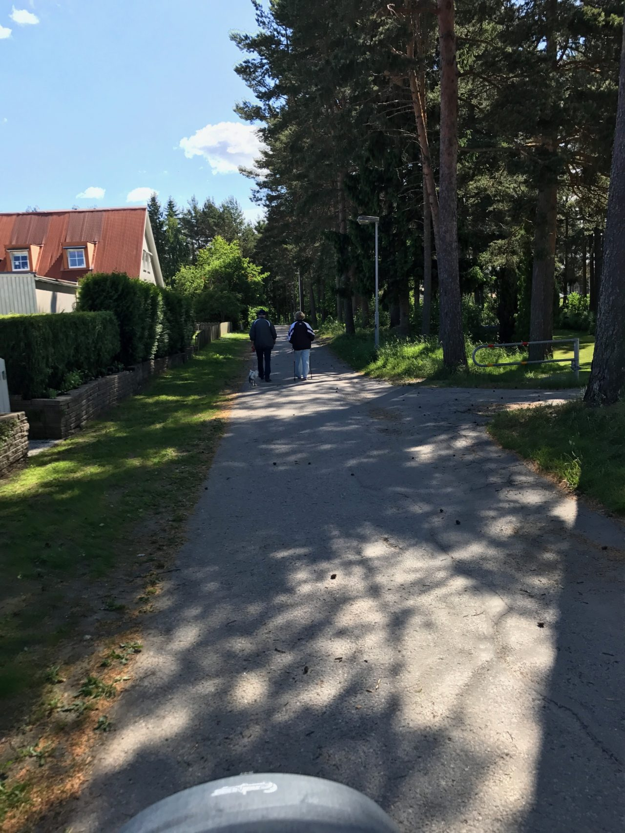 Old Couple Walking On A Asphalt Path With Trees And Houses