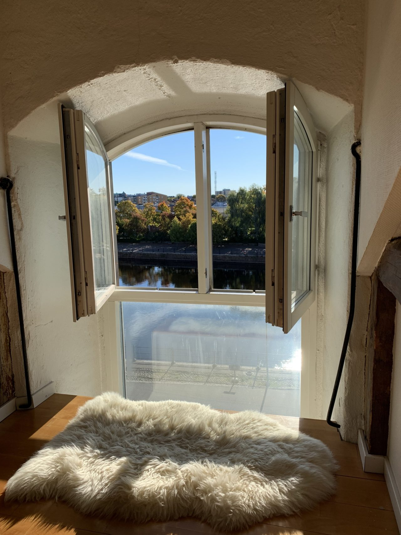 Open Window With Sheep Fur On Summer Day