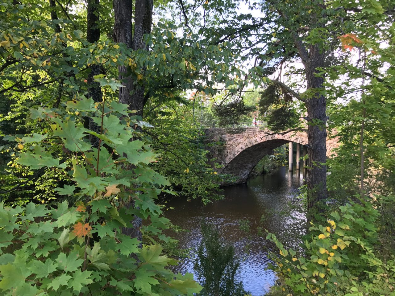 Stone Arch Bridge Of Stream With Trees